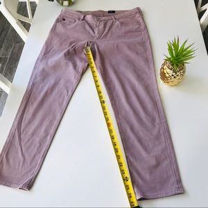 Ag Adriano Goldschmied Jeans - Adriano Goldschmied The Stevie Ankle 32R Pants